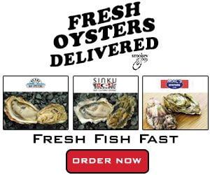 Fresh Fish Fast google ads campaign