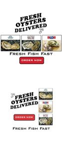 Fresh Fish Fast google ads campaign