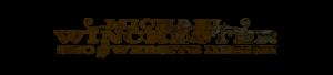 Michael Winchester SEO and Website Design logo 2020