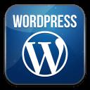Wordpress icon, 10+ years experience